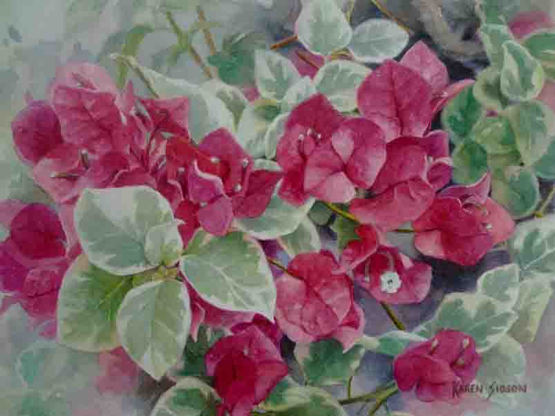 Karen Sioson_Bougainvillea_Fuschia_Jan 2016_TN