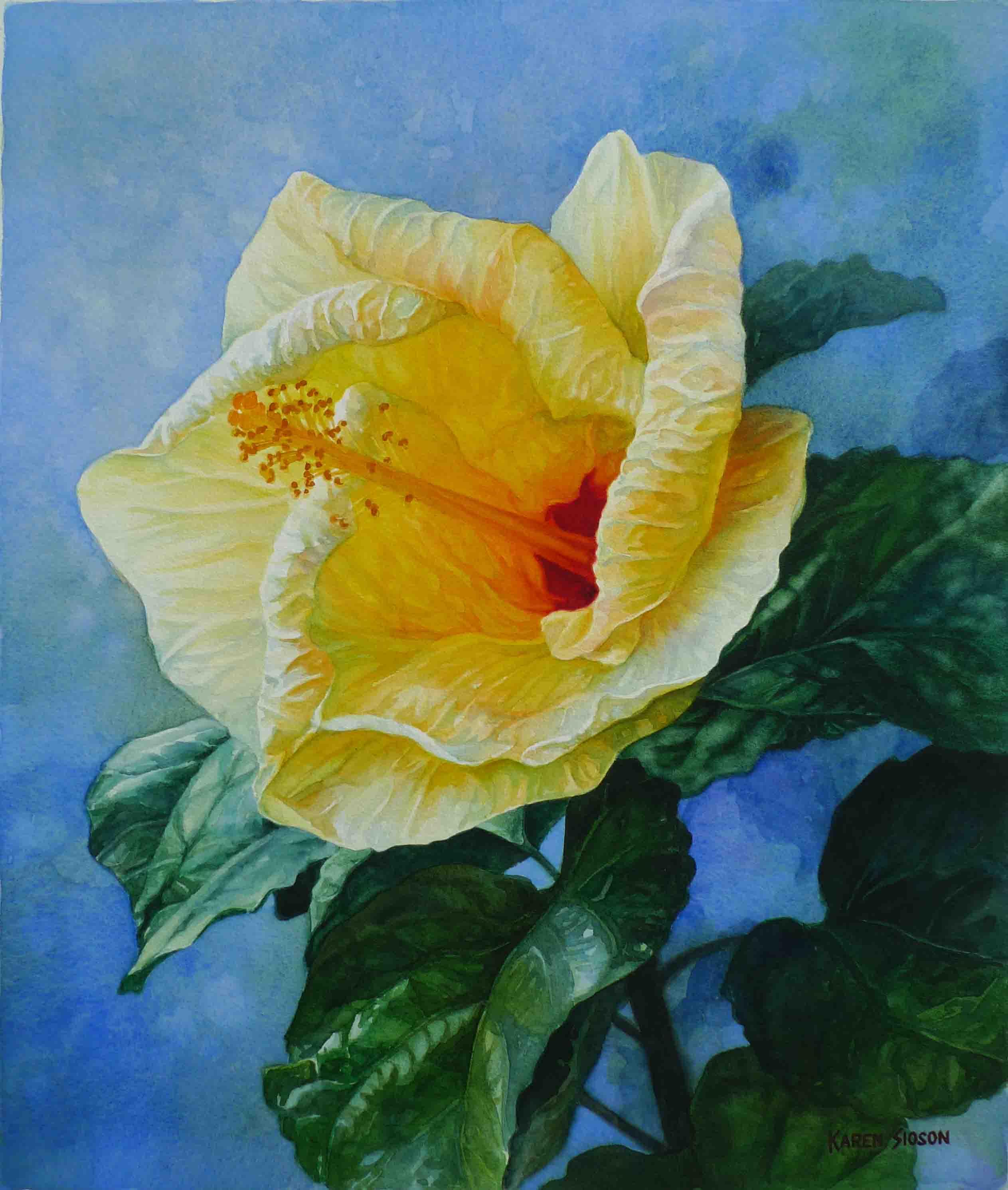 karensioson_sunlit_yellow_hibiscus