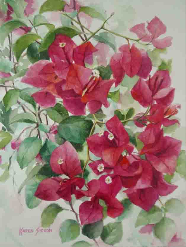 Karen Sioson_Bougainvillea_Fuschia_May_2017_TN