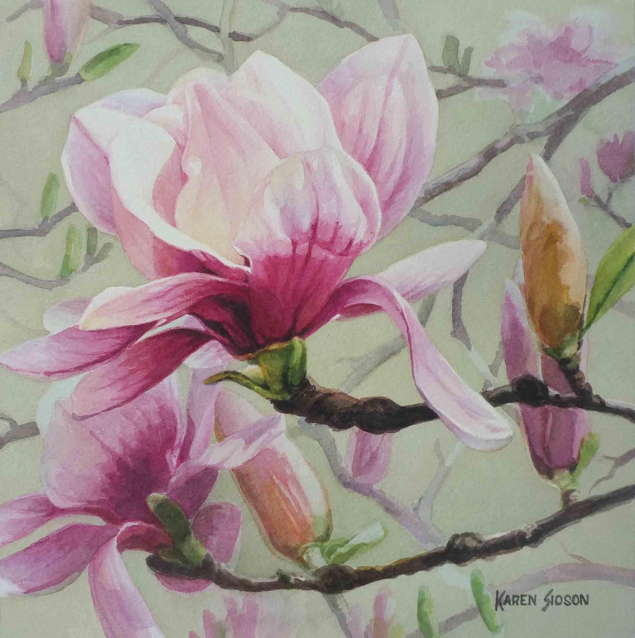 karensioson_magnolia_wn