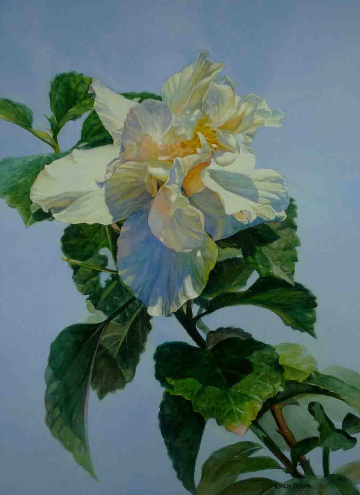 Karen Sioson_Sun Kissed Hibiscus_TN