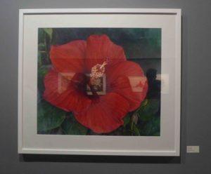 Karen Sioson_Big Red Kiss_framed