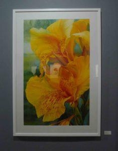 Karen Sioson_Yellow Canna_framed