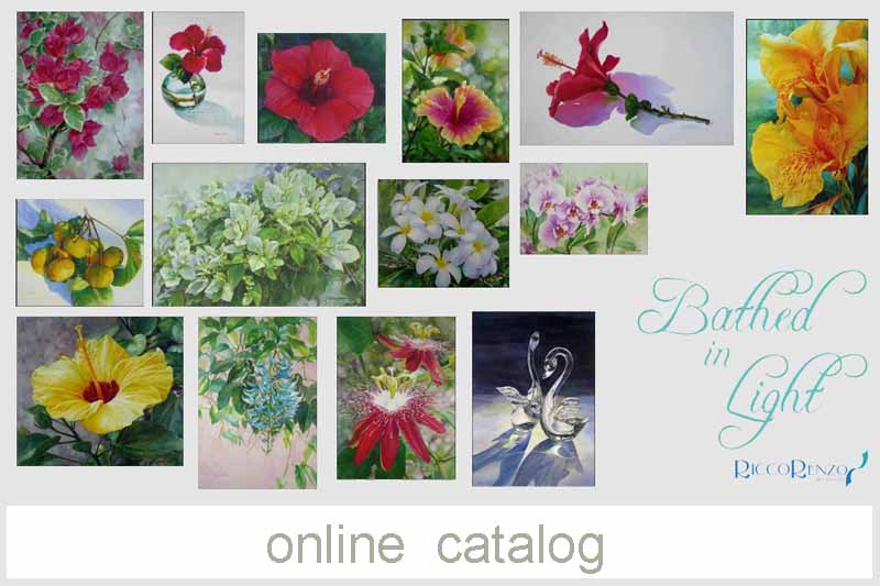 online catalog panel